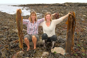 Seaweed Cookbook